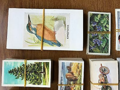 Selection of Brooke Bond Picture Cards