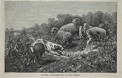 Dog English Setter Llewellyn Chases Rabbit Thru Sheep Flock, 1870s Antique Print