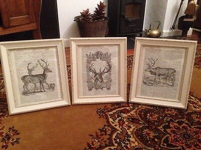 Vintage Shabby Chic Feature Wall Art Images Stag Deer X3 Rustic Farm House Style