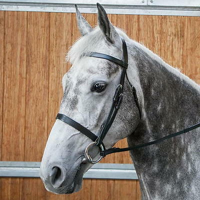 Requisite Flat Cavesson Snaffle Bridle - Black