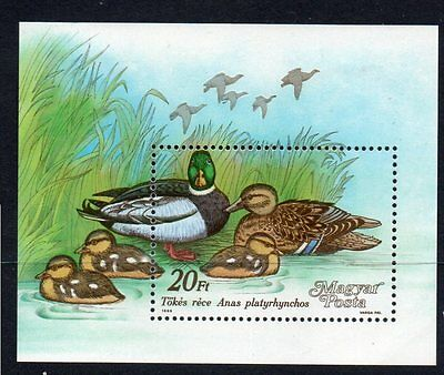 Hungary 1988 Wild Ducks M/m M/s Cat £6+