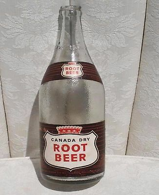 Rare Canada Dry Root Bear Empty Glass Bottle