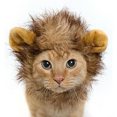 Nicrew Cat Costume Lion Mane Wig Hat for Cats