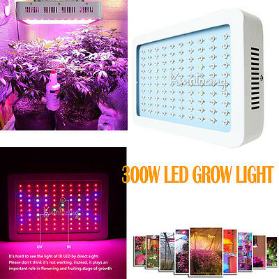 300W LED Grow Light Full Spectrum Hydroponic Panel Veg Flower Lamps 600W IR