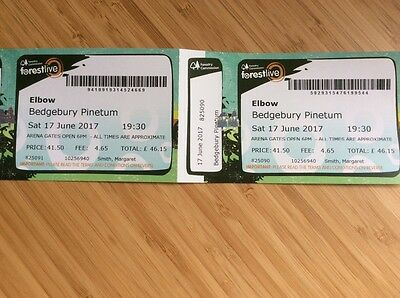 2 tickets for Elbow at Bedgebury Pinetum
