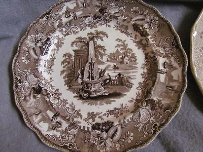 Antique Transferware  Grecian Font Plate W. A. & S. with Seashells