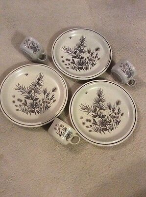 W H Grindley Stoneware *pinewood* Three Plates--Dinner Plates X 3 & 3 Cups