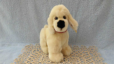 Steiff Dog Hund Poodle Pudel Cosy Tobby weiß 5445/20 mit KF, TOP !