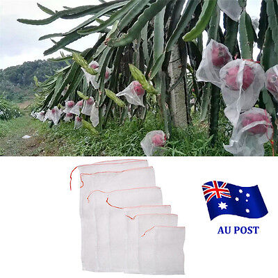 1-100X Garden Plant Fruit Protect Bags Sac Net Mesh Against Insect Pest Bird  BO