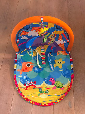 Lamaze Baby Play Gym Sit up and See