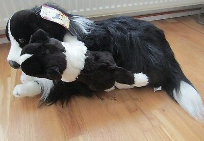 """Large Realistic Welsh Border Collie Dog & Puppy Soft Toy 22"""" by Prima Classique"""