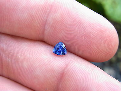 Rare Certified Unheated Blue Ceylon Sapphire 0.48Cts Lovely Luster/fire Trillion