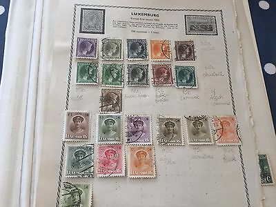 Luxembourg stamp hoard on album pages direct from different estates untouched