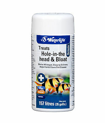 Waterlife Octozin Treatment Hole In The Head & Internal Parasites 21 Tablets