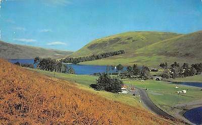 """Selkirkshire St Mary's Loch Lake General view 1976 """"Lilywhite LTD"""""""