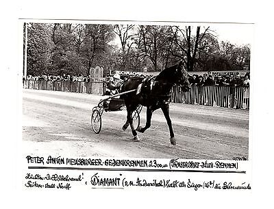 Original Press Photo Harness Trotting Racing Diamant 25.4.1970