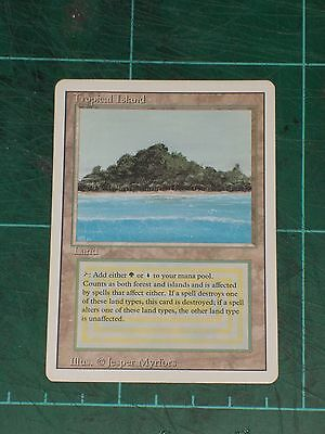MTG: Tropical Island. Mint/Near Mint. Magic The Gathering - Revised Edition.
