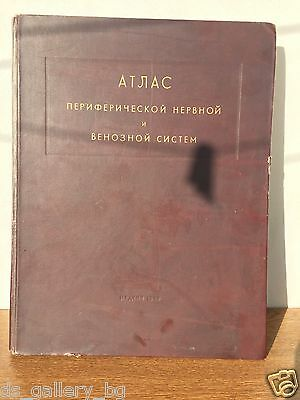 """medical book USSR """"Atlas of the nervous and vein systems"""" 1949"""