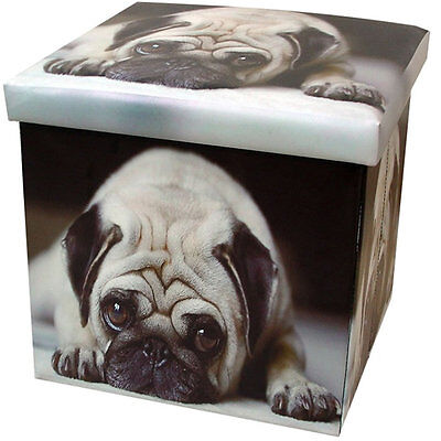Pug Storage Box and Seat