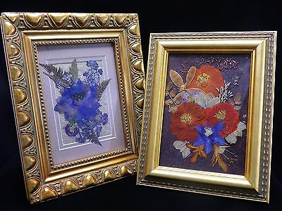 Pressed Flower Pictures #5 ~ Cosmos/Delphinium ~ Gold Stepped Wooden Photo Frame