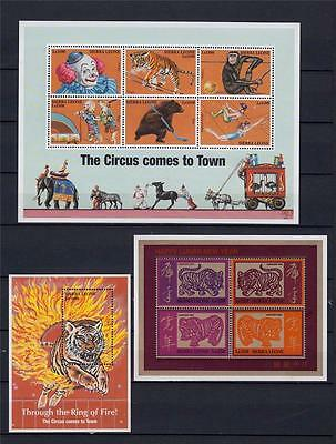 TIGER Sierra Leone 1998 & 2000 MNH CATS Year Wildlife Circus 3x M/Sheets #B300
