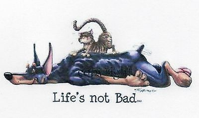 """Doberman """"Life's not Bad"""" by Mike McCartney"""
