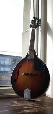 Ashbury Mandolin and Gig Bag