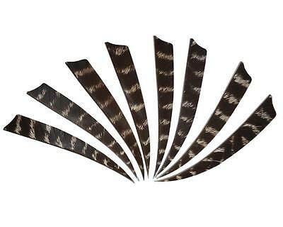 100x Archery Real Turkey Feather Right Shield Arrows Fletching Striped Hunting