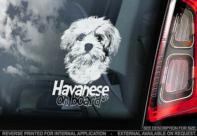 Havanese - Car Window Sticker - Dog Sign -V01