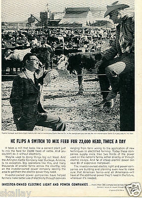 1964 Print Ad of Investor Owned Electric Light & Power Arlington Cattle Company