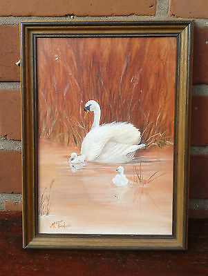 M.Toseland: Framed signed oil painting on board of a Swan and Cygnets
