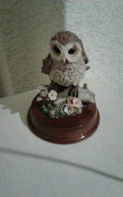 Cuggly wugglies collection owl