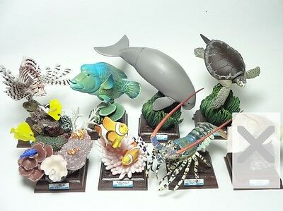RARE  Figure Kitan Club - Nature Techni Colour  Toba Aquarium  7 pc