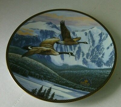 Collectible Canadian Geese Return Home Decorative Plate Hard Fired China Plates