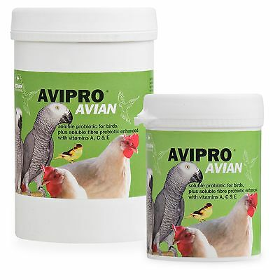 Vetark Avipro Avian 1kg - Supplements for Parrots, Birds, Poultry  etc.