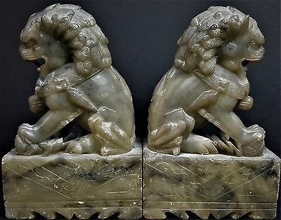 Chinese Carved Pair Soap Stone Foo Dog Temple Lion Bookends Statue Figurines
