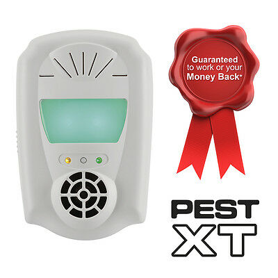 Pest XT Ultrasonic 4-In-1 Plug In Pest Mouse Rat Mice Spider Repeller Repellent