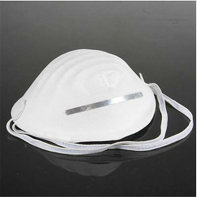 10xNuisance Dust Mask Disposable Cleaning Molded Face Masks Respirator Filterne