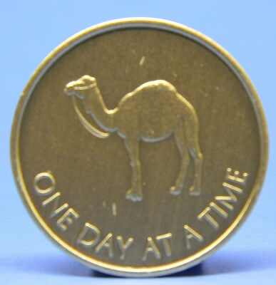 Bronze Chip - Medallion - Camel- Recovery - Sobriety