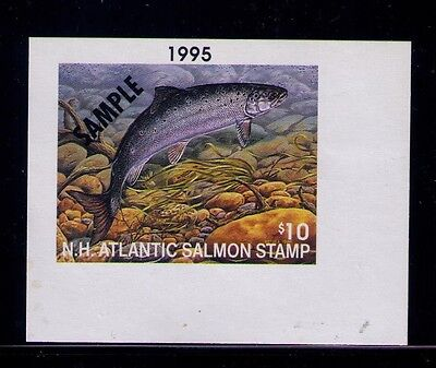 1995 New Hampshire Atlantic Salmon Conservation Stamp SAMPLE MLH