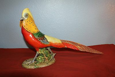 "1940's-LARGE Majolica GOLDEN PHEASANT FIGURINE-12""x20""-SIGNED-12th of 33-Italy"