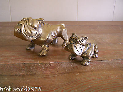 Lot Of 2 Vintage Solid Brass English Bulldogs Mascot Figurines