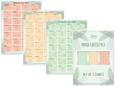 Yoga Exercise Posters Yoga Poses Charts