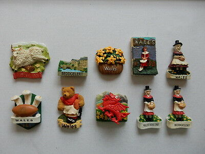 One Selected 3D Souvenir Fridge Magnet from Wales