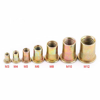 20/100pcs- M3 M4 M5 M6 M8 M10 M12 Carbon Steel Flat Metric Threaded Rivet Nut OB