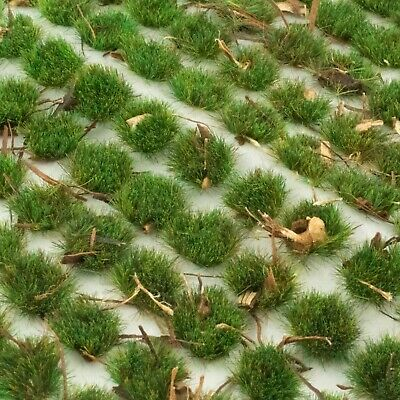 WWS Forest Bodenabdeckung Sommer 4mm Selbstklebend Static Grass Tufts x 100