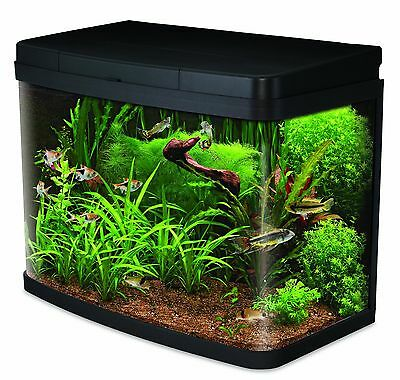Interpet Insight Glass Aquarium Fish Tank Premium Kit - 40 Litre 40 L