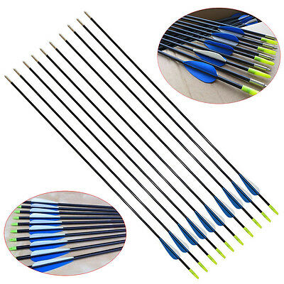 "10X 31"" Heavy Duty Fiberglass Arrows Compound & Recurve Bow Hunting Archery AC"
