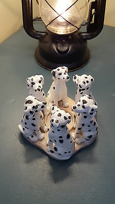 Dalmatian Dog Circle Votive Candle Holder New In Box Puppy