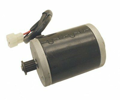BRAND NEW 100W 12V or 24V REPLACEMENT MOTOR MODEL MY6812 RAZOR